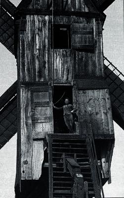 Kuitenbergmolen Evergem-Belzele