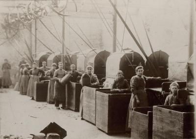 Arbeidsters Haarsnijderijfabriek Enke, ca. 1896