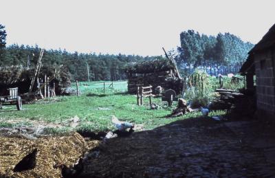 Hoeve Dossche, Lembeke, jaren 1960