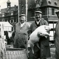 aardappelen rapen op het veld, Kaprijke (?)