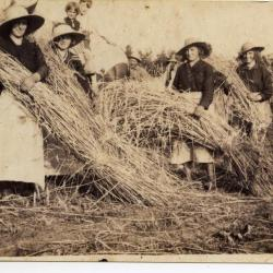 Landarbeiders, Meuleken Boekhoute