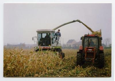 Hakselen van maïs