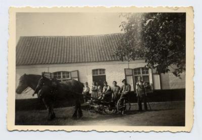 Klaar voor de oogst, Zomergem, ca. 1950