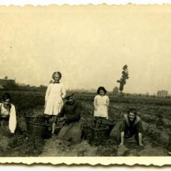 Clayson Armada pikdorser eind jaren '60