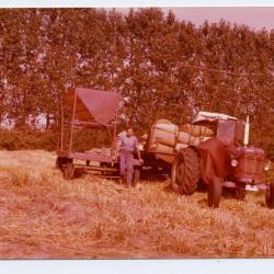 Ambiance op de boerderij