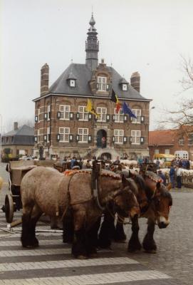 Trekpaarden op de Vette Veemarkt, Zomergem, 1990-2000
