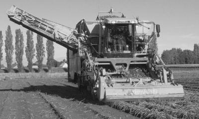 Moderne aardappelrooier